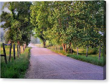 Morning Light Sparks Lane  Canvas Print by Thomas Schoeller