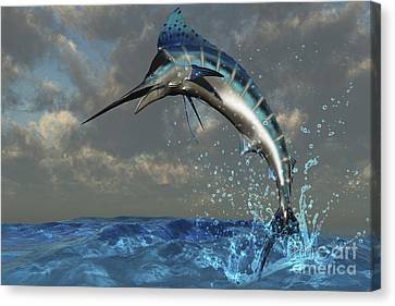 A Blue Marlin Flashes Its Iridescent Canvas Print by Corey Ford