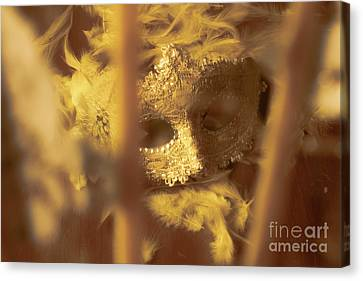 A Cabaret Mystery Canvas Print by Jorgo Photography - Wall Art Gallery