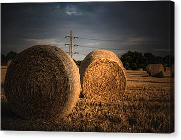 A Cereal Drama Canvas Print by Chris Fletcher