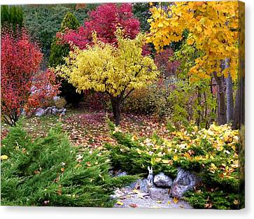 A Colorful Fall Corner Canvas Print by Will Borden