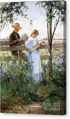 A Country Romance Canvas Print by David B Walkley