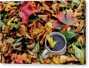 A Cup Of Autumn Canvas Print by Tatyana Aksenova