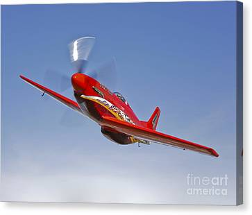 A Dago Red P-51g Mustang In Flight Canvas Print by Scott Germain