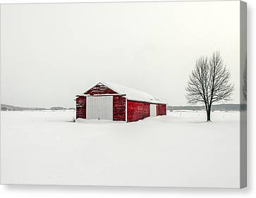 A Darker Kind Of Red Canvas Print by Todd Klassy