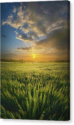 A Day In The Life Canvas Print by Phil Koch