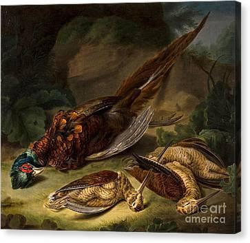 A Dead Pheasant Canvas Print by Stephen Elmer