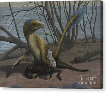 A Deinonychus Protects Its Kill Canvas Print by Emily Willoughby