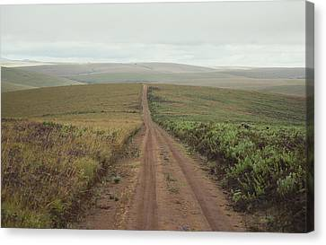 A Dirt Road Leading To The Horizon Canvas Print by Bill Curtsinger