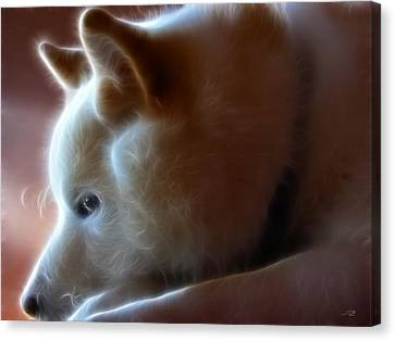 A Dogs Life Canvas Print by Stuart Turnbull