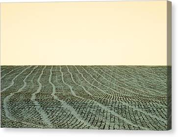 A Field Stitched Canvas Print by Todd Klassy