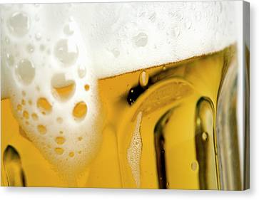 A Glass Of Beer Canvas Print by Caspar Benson
