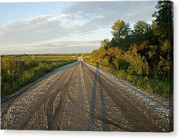 A Gravel Road Leads Away From A Farm Canvas Print by Joel Sartore