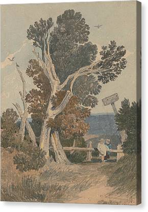 A Group Of Trees By A Fence Canvas Print by John Sell Cotman