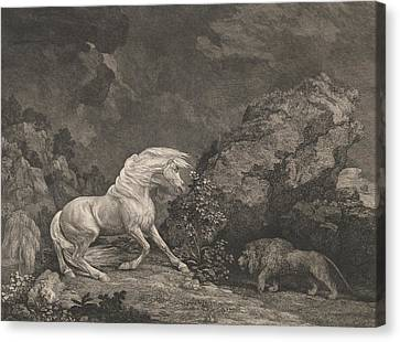 A Horse Affrighted By A Lion Canvas Print by George Stubbs