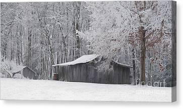 A January Day Canvas Print by Benanne Stiens