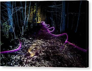 A Light Painted Trail At Night  Canvas Print by Sven Brogren