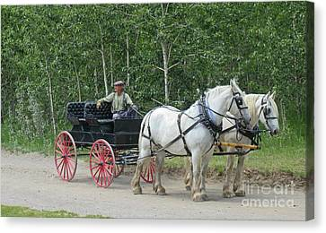 A Moment In Time Canvas Print by John Malone
