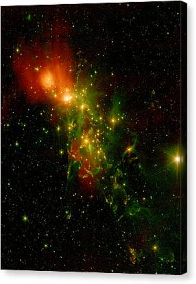 A Nebula Called Ngc 1333 In The Constellation Perseus Canvas Print by American School