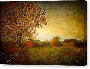 A New Dawn Canvas Print by Michael Petrizzo