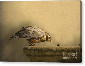 A New Day Canvas Print by Jan Piller