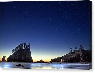A Night For Stargazing Canvas Print by William Lee