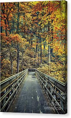 A Path Into Autumn Canvas Print by Evelina Kremsdorf