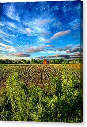 A Perfect Beginning Canvas Print by Phil Koch