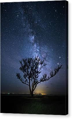 A Picnic Under The Milky Way Canvas Print by Mark Andrew Thomas