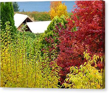 A Picturesque Fall Setting Canvas Print by Will Borden