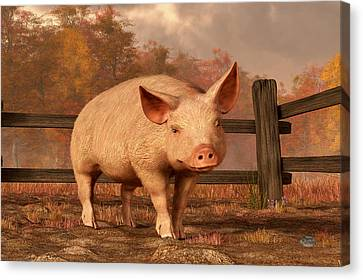 A Pig In Autumn Canvas Print by Daniel Eskridge