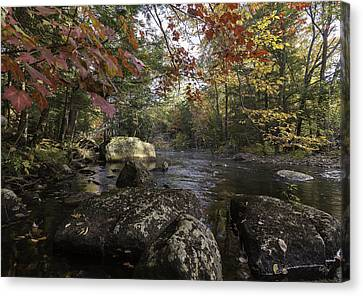 A Place To Ponder Canvas Print by Everet Regal