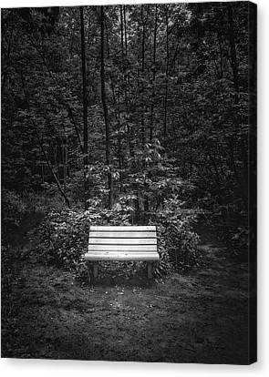 A Place To Sit Canvas Print by Scott Norris