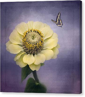 A Poem Begins - Flower Art Canvas Print by Jordan Blackstone