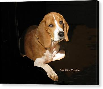 A Portrait Of Jerry Canvas Print by KLM Kathel