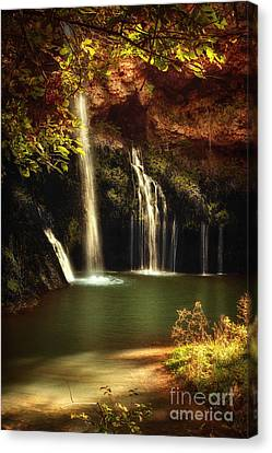 A Resting Place At Dripping Springs II Canvas Print by Tamyra Ayles