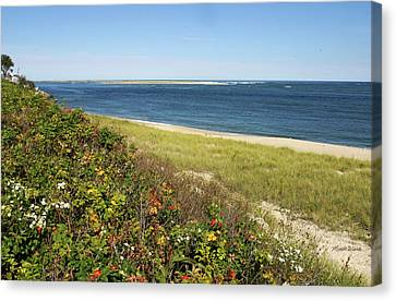 A September Afternoon Chatham Cape Cod Massachusetts Canvas Print by Michelle Wiarda