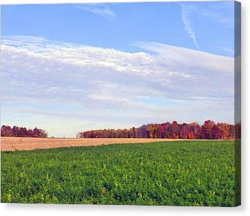 A Serene Autumn Landscape 2015 Canvas Print by Tina M Wenger