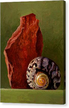 A Shell And Rock Conversation Canvas Print by Catherine Twomey