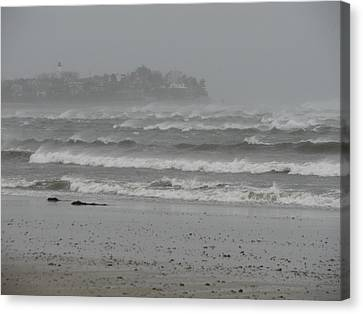 A Sign Of The Tides Canvas Print by Brian Mazzoli