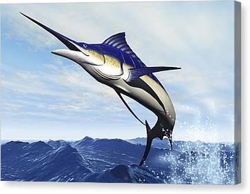 A Sleek Blue Marlin Bursts Canvas Print by Corey Ford