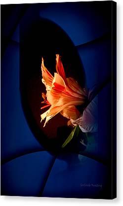 Delicate Flower Canvas Print by Gerlinde Keating - Galleria GK Keating Associates Inc