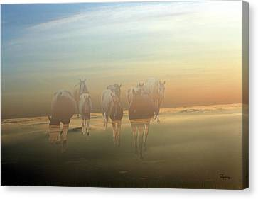 A Touch Of Horse Heaven Canvas Print by Andrea Lawrence