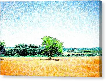 A Tree Near Siena Canvas Print by Jason Charles Allen