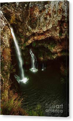 A View From Above The Falls II Canvas Print by Tamyra Ayles
