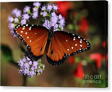 A Visit From The Queen Canvas Print by Sabrina L Ryan