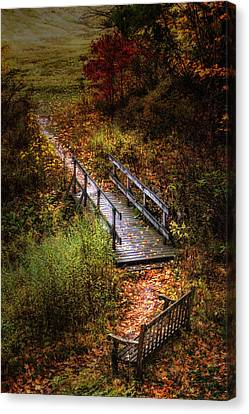 A Walk In The Park II Canvas Print by Tom Mc Nemar
