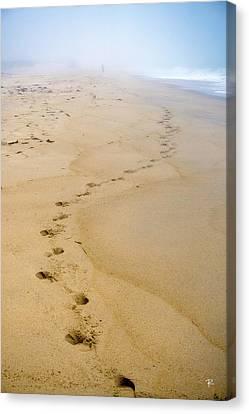 A Walk On The Beach Canvas Print by Tom Romeo