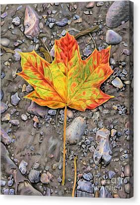 A Walk Through The Woods Canvas Print by Sarah Batalka