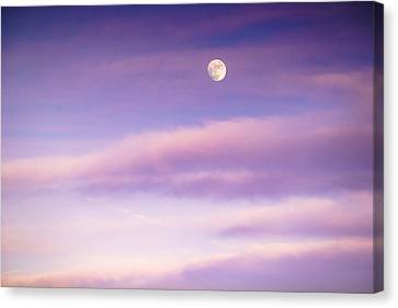 A White Moon In Twilight Canvas Print by Ellie Teramoto